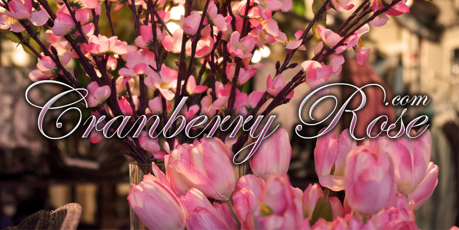 Cranberry Rose Boutique & Gift logo